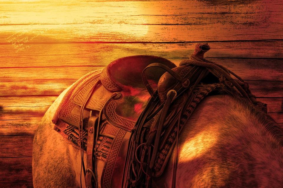 saddle on a horses back